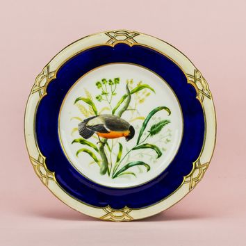 Bird painted cake plate