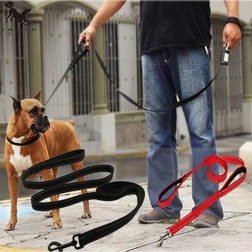 Two Layers Nylon Safety Control Dog Leash