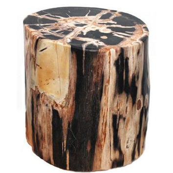 Petrified Wood Stool