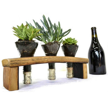 Wine Barrel Stave and Glass Herb Terrarium
