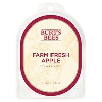 Burt's Bees Apple Warmer Melts