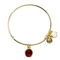 Alex and Ani January Birthstone Charm Bangle Bracelet - Shiny Gold ...