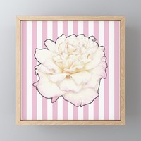 Pale Rose on Stripes Framed Mini Art Print by drawingsbylam