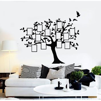 Vinyl Wall Decal Family Tree Branch Genealogical Frames For Photos Stickers Mural (g1142)