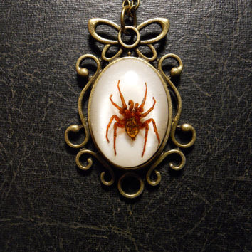 Butterfly Frame Spider Specimen in Resin Cameo Necklace