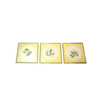 Yellow Floral Print Pictures Framed Floral Prints Framed Pictures Brass Frames Wall Hangings - Set of 3