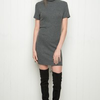 DARIA TURTLENECK DRESS