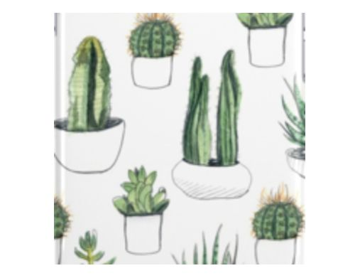 watercolour cacti and succulents iPhone Cases & Skins
