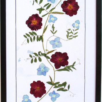Framed Pressed Flower Art - Wall Art Red Roses and Blue Hydrangea, Original Pressed Flower Art, Framed Art, Wall Art, Reiki Charged