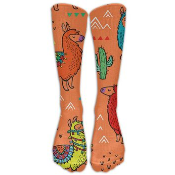 Aztec Desert Llama Novelty Cotton Knee High All-Over Printed Socks