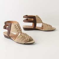 Rockland Sandals-Anthropologie.com