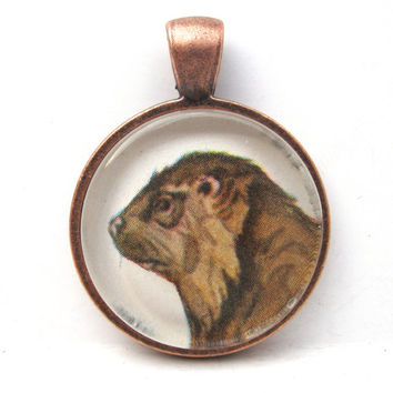 Beaver Art Pendant from Illustration in Vintage Children's Book in Glass Tile Circle
