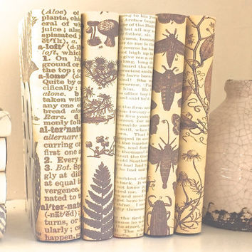 Interior design - Decorative books - Neutral books - Botanical - Custom book covers - Custom book jackets - Bookshelf decor - Home Decor