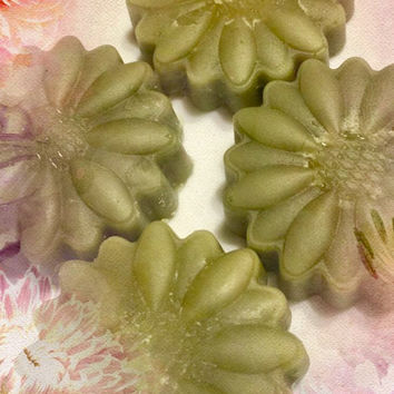 Fresh Bamboo Palm Wax Cube Melts Tarts