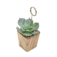 Succulent Photo Holder