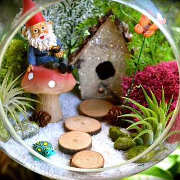 "Garden Gnome Terrarium Kit ~ 8"" Air Plant Terrarium Kit ~ House ~ Gnome Figure on Mushroom ~ Sand and House Choice ~ Gardening ~ Gift Idea"