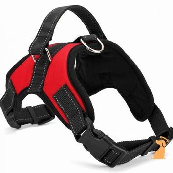 K9 Harness & Training Saddle