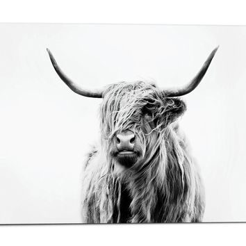 Dorit Fuhg PORTRAIT OF A HIGHLAND COW