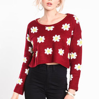 Fresh as a Daisy Cropped Sweater - LoveCulture