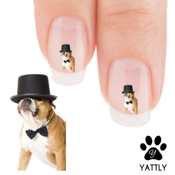 "Pit Bull ""Yeah! I am Cool"" Nail Art Decals ( NOW 50% MORE FREE)"