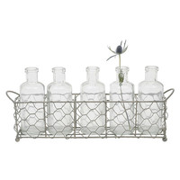 Creative Co-Op Casual Country 6 Piece Glass Bottle/Vase Set & Reviews | Wayfair