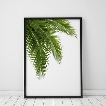 Palm Tree Frond - INSTANT DOWNLOAD, printable, modernart, wallart, homedecor, prints, art, palmtree, tropical, beach,minimalist, photography