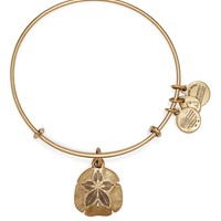 Alex and Ani Sand Dollar Expandable Wire Bangle