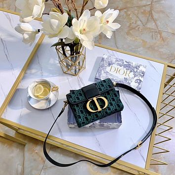 Dior Women Shopping Leather Crossbody Satchel Shoulder Bag green