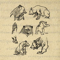 Printable Digital Antique Bear Collage Sheet Graphic Blackbear Image Download Vintage Clip Art Jpg Png Eps 18x18 HQ 300dpi No.1142