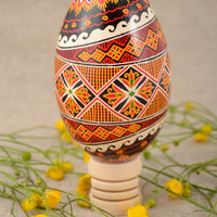 Handmade traditional bright pysanka decorative goose egg painted with acrylics