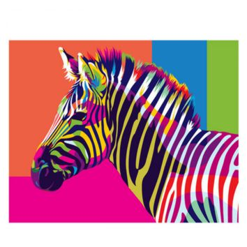 Rainbow Horse DIY Paint by Numbers Kit