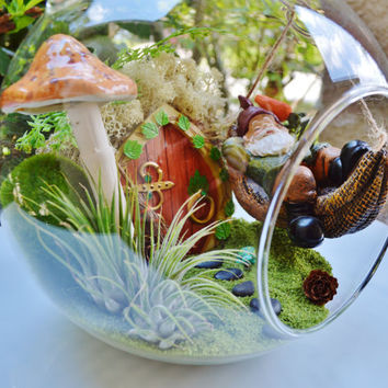 "Sleeping Gnome Terrarium Kit ~ Gnome in a Hammock ~ 2 Air plants ~ Mushroom, Sand, and Moss Choice ~ 8"" Glass Globe - So So cute ~ Gift Idea"