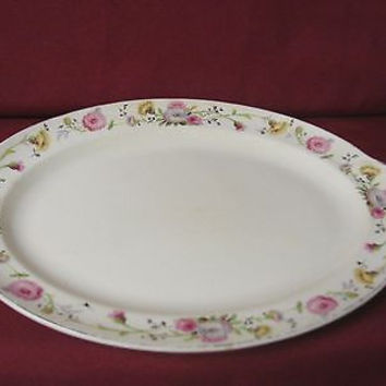 Vintage Taylor Smith & Taylor China Dinnerware USA Premier Oval platter Issues