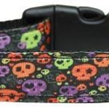 Confetti Skulls Nylon Dog Collar Medium