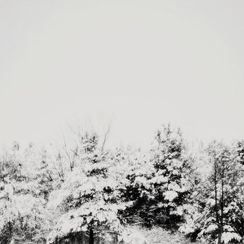 SALE Winter Landscape, Photography, Forest, Gray, Trees, Minimal, Christmas, Vintage, Snow, Black and White, Modern, December, Woodland