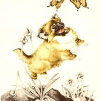Butterflies Play with Pekingese Puppy Lithograph Illustration by Dorothy P Lathrop SIGNED Uncommon 1954 Book Art Print
