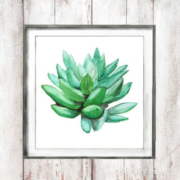 Vintage Botanical Watercolor Print green  succulent echeveria plant  wall decor home decor valentine's day  watercolor art digital download
