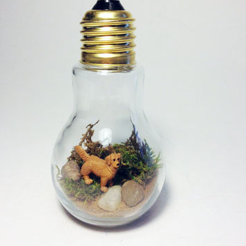 Recycled Golden Retriever Dog Light bulb Terrarium
