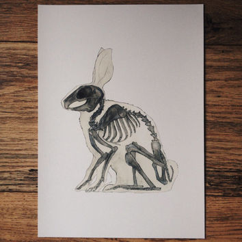 Rabbit, bunny skeleton, animal, anatomy, print, watercolor painting, art,drawing, picture