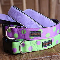 Lily Apple Spotty Dog Collar And Velvet Lead