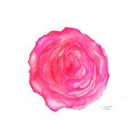 Where the Roses Bloom Again, print from original watercolor rose by Jessica Durrant