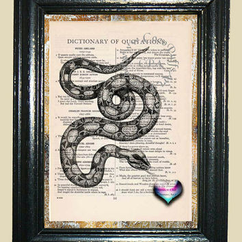 Boa Constrictor Snake with Rainbow Heart Art - Vintage Dictionary Book Page Art Print Upcycled Page Art Snake Print