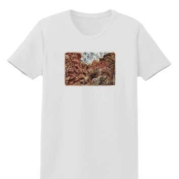 Colorado Painted Rocks Watercolor Womens T-Shirt