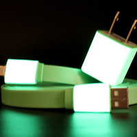 Lou Anne Castillo: iPhone 5 Charger 10ft Green, at 11% off!