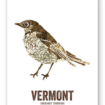 Hermit Thrush // Vermont State Bird, Nature/outdoor Print, Vintage Map, State Poster, Folk, Rustic, Outdoor, Country, Reproduction Print
