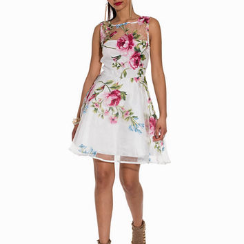 Floral Skater Dress, Ax Paris