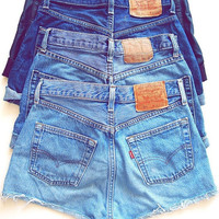 Vintage High Waisted Denim Shorts All Sizes by CoHoSupplies