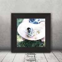 Cat in the Hat Print, Square Print, Animal Print, Kitten Image, Country Decor, Neutral Decor, Agriculture Photo, Gift ideas, Kids Room
