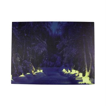 "LED Lighted Nighttime in the Woods Winter Scene Canvas Wall Art 11.75"" x 15.75"""