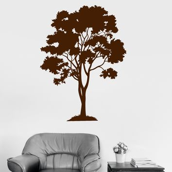 Vinyl Wall Decal Tree Forest Wood Home Decoration Stickers Mural Unique Gift (ig3155)